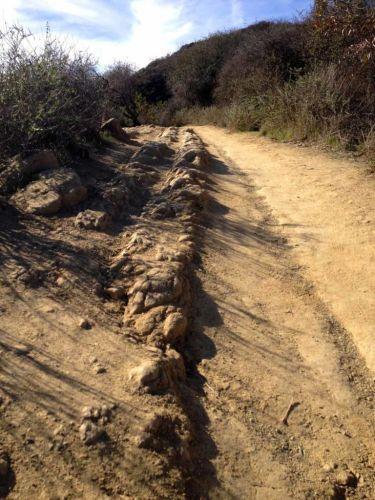 Sandstone ridge resembles a dragons back