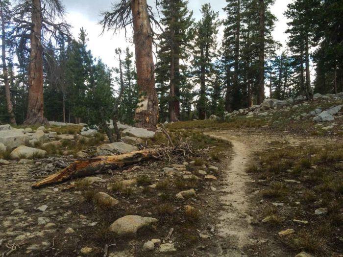 Anti-climactic Merced Pass