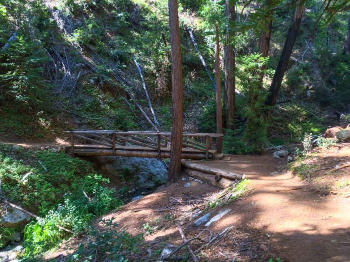 Typical Bridge on the Ewoldsen Trail in Big Sur