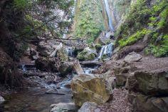 Near the base of Limekiln Falls