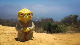 Yoda approves of the Pacfic Ocean views