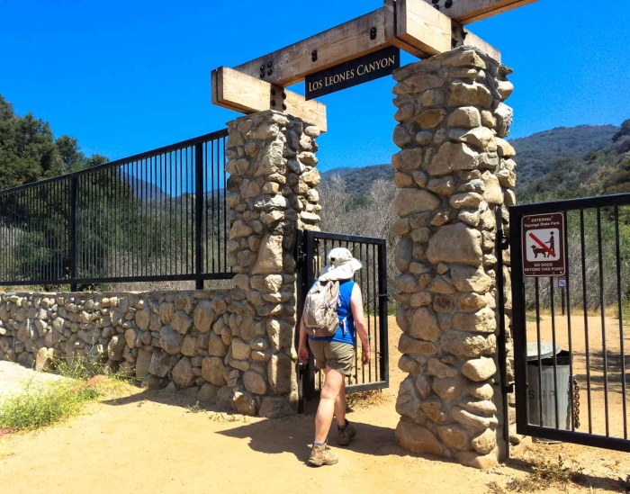 Starting the Los Leones Canyon Trail