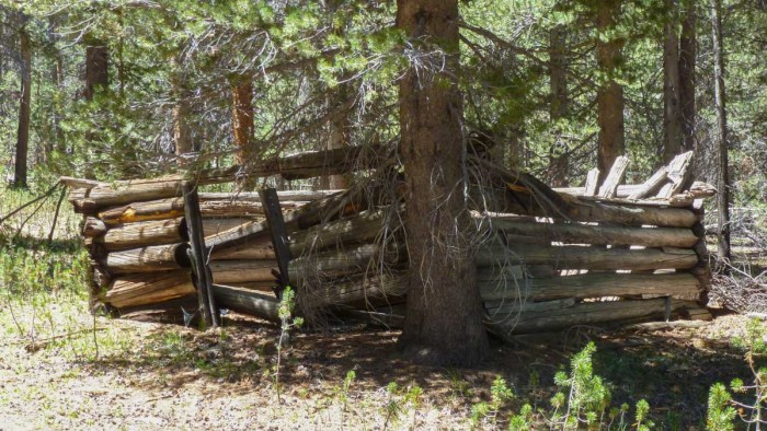 Day 3 on the HST: Old Cabin Near Moraine Lake