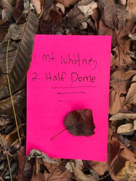 Mt Whitney & Half Dome