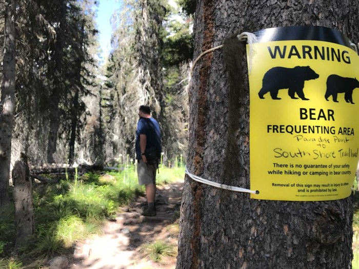 Bear warning on the Paradise Point Trail