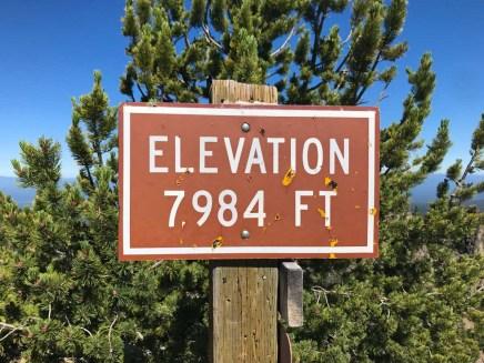 Paulina Peak, Elevation 7,984 feet