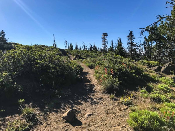 The fire lookout trail atop Black Butte
