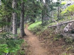 The Black Crater Trail