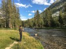 Fishing in Piute Creek at Hutchinson Meadow