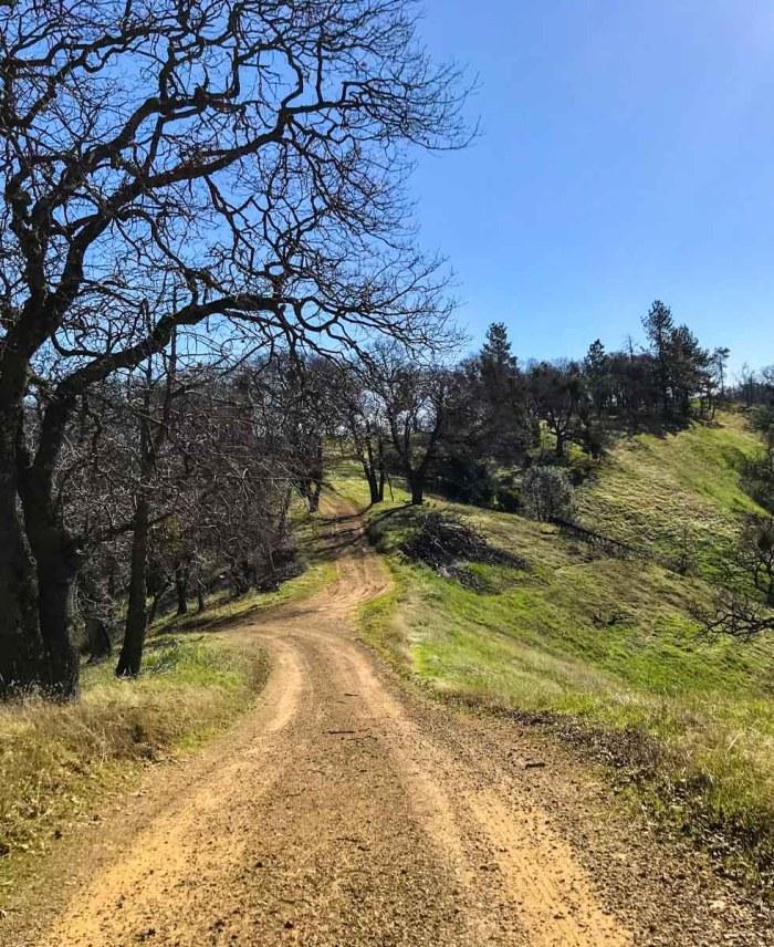 Following the Blue Ridge Road toward Mt Sizer