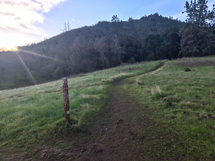 Take the Eagle Peak Trail