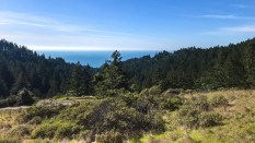 Views to the Pacific Ocean