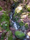 Countless rivulets and waterfalls