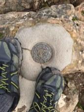 Mt Tam benchmark