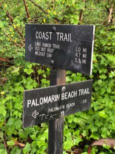 Stay on the Coast Trail