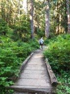 One of several wood bridges on the lower portion of the Mt Pilchuck Trail