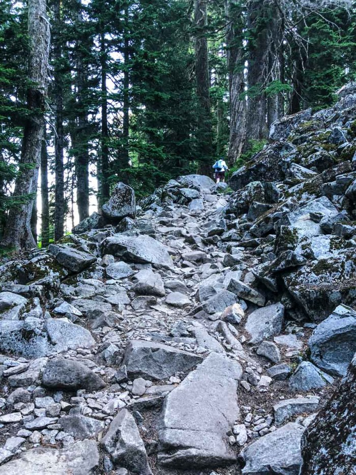 Yeah, you could say the Mt Pilchuck Trail gets rocky