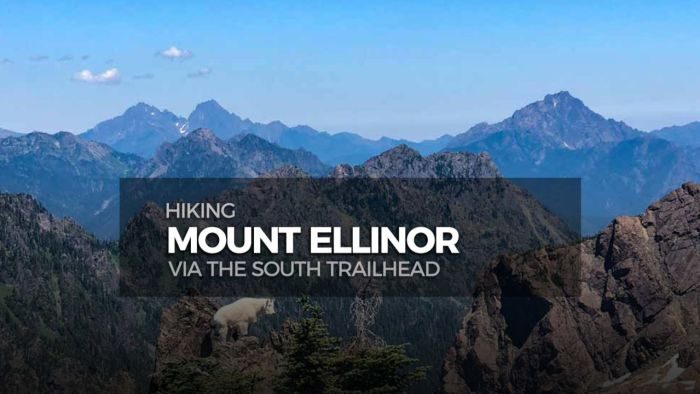 Share this post! Hiking Mt Ellinor.