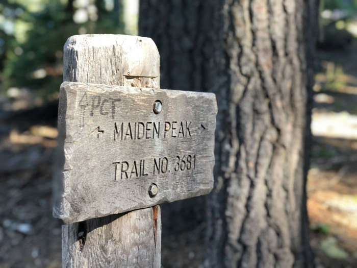 Crossing the Pacific Crest Trail on our way up Maiden Peak
