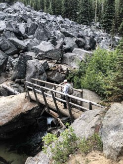Log bridge at boulder field