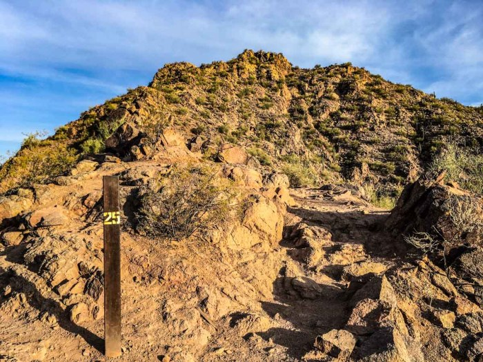 Where the views start to get better on the Cholla Trail