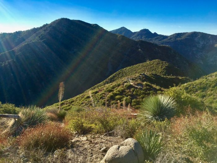 Strawberry Peak hike guide