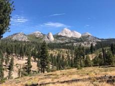 Mt. Starr King