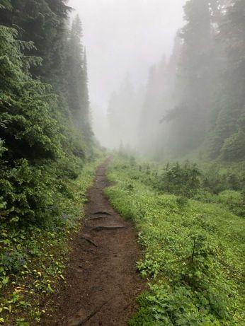 Mystical Wonderland Trail