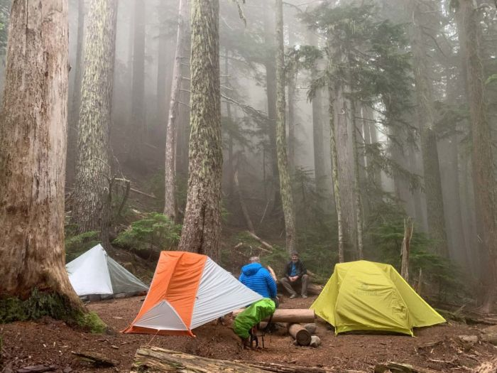 Damp evening at Eagles Roost Camp
