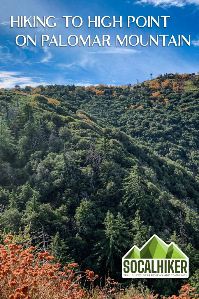Hiking to High Point on Palomar Mountain