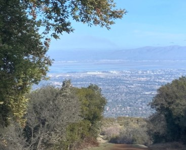 View of the bay from Black Mountain