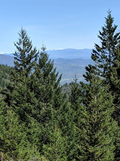 Mt-St-Helena-NE