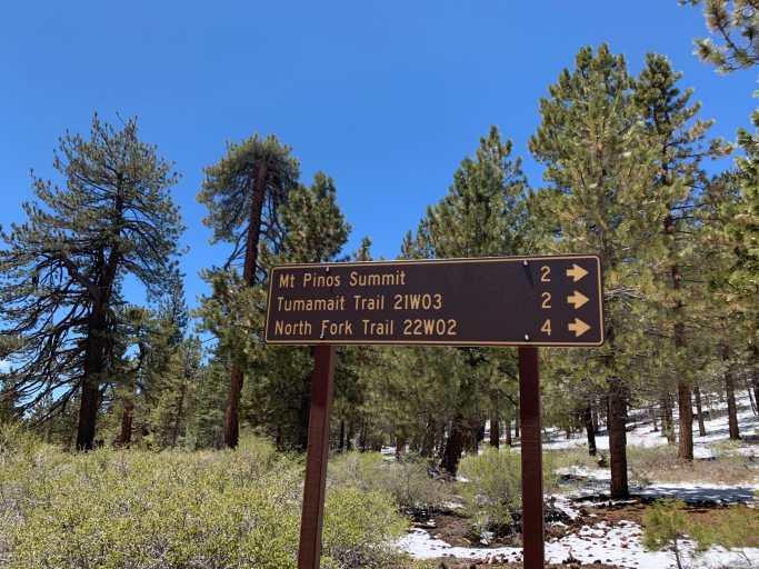 1st summit Mount Pinos 826FE893-2875-4FA5-A5D1-855FA03890B1C1BE6A2E-5424-4474-BFC9-1224D5B69CE3E8880