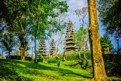 Bali24150417
