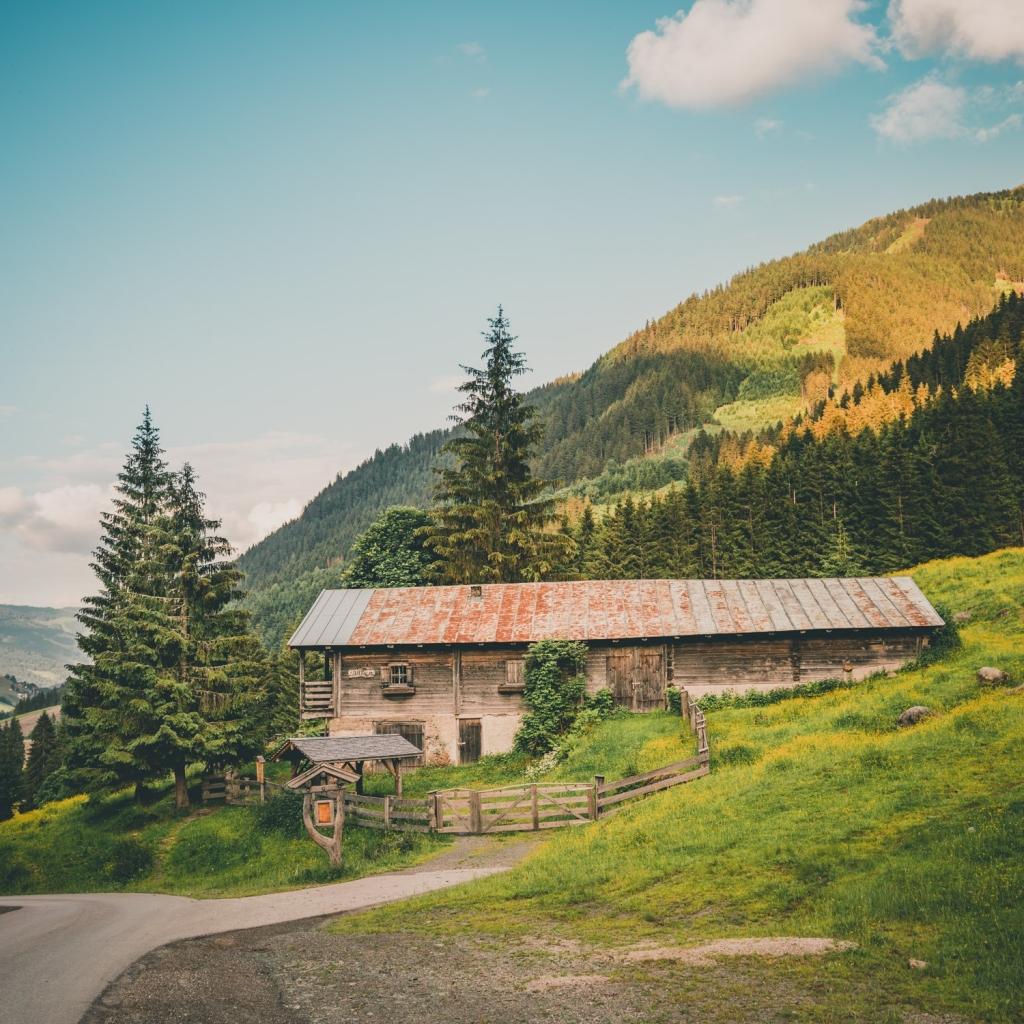saalbach skigebied in de zomer