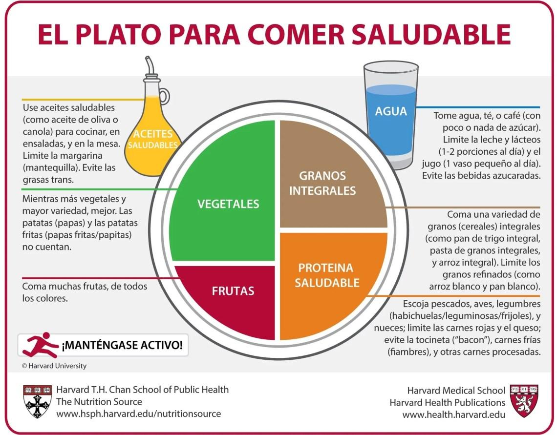 El Plato para Comer Saludable (Spanish) | The Nutrition ...