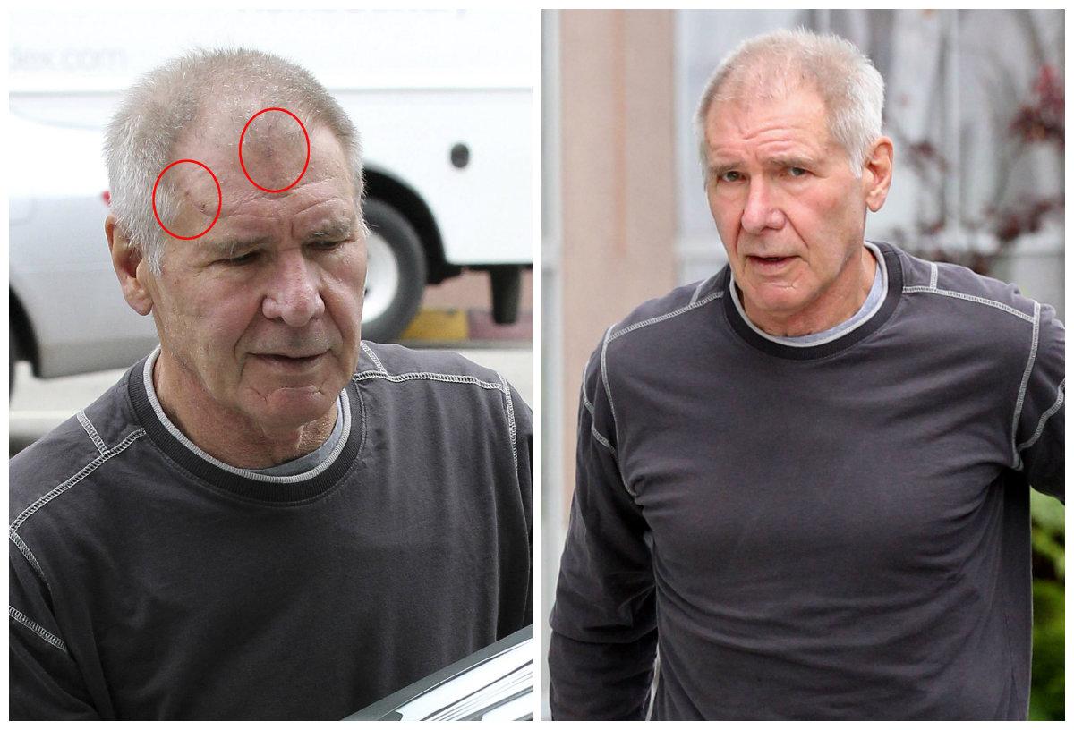 Manly Ben Ford Harrison Ford Harrison Ford Son Willard Ben