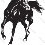 Arabian Horse Black White Royalty Free Vector Image