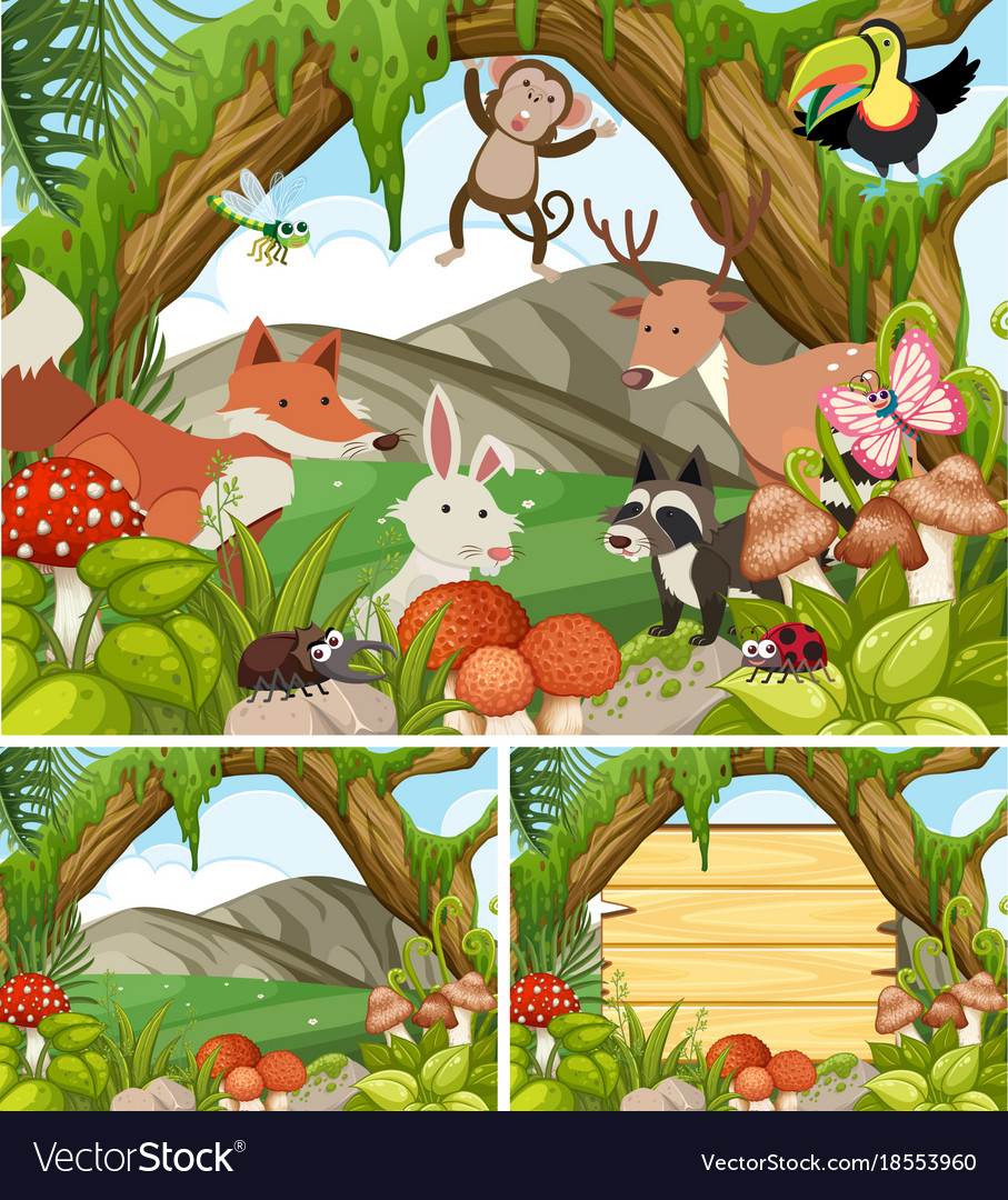 Believe it or not, the plants did. Three Forest Scenes With Animals And Plants Vector Image