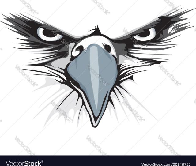 Eagle Eye Vector Image