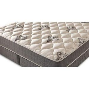 Denver Mattress Doctor S Choice