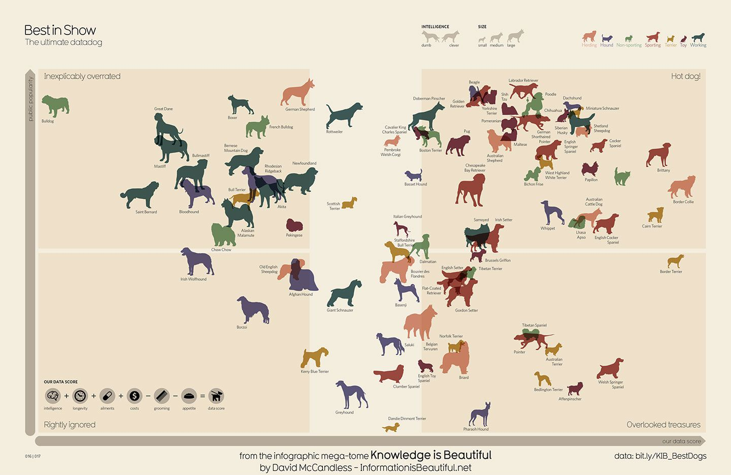 Breeds Rankings Chart Dog
