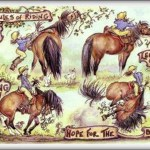 4 Rules Of Riding Funny Horse Cards Jude Too Lesley Bruce Bon Vivant Unique Equestrian Supply Accessories