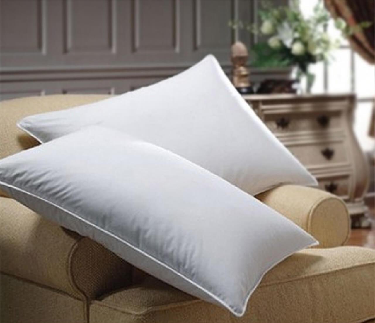 goose feather pillow european size