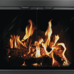 Thermo Rite Glass Fireplace Doors