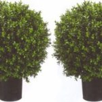 Plastic Boxwood Balls Topiary Boxwood Ball Decor