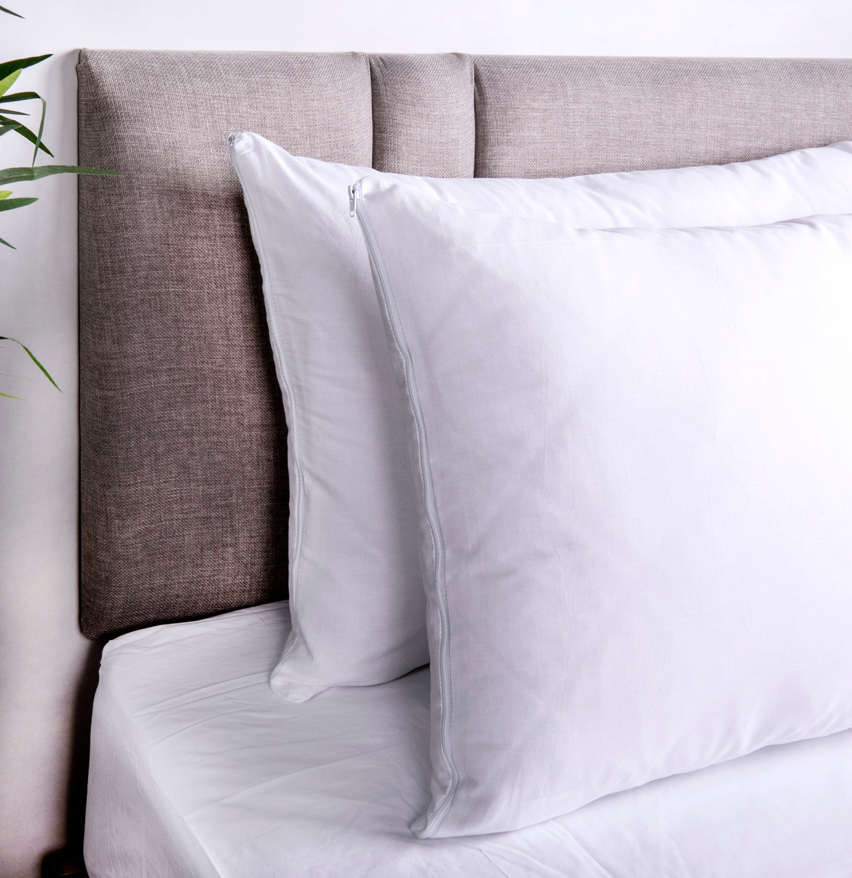 cotton zipped pillow protectors pack of 8