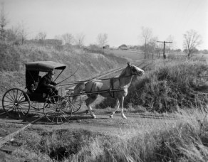 1890s-1900s Rural Country Doctor Driving Horse & Carriage Across Railroad Tracks Print By Vintage Collection - Item # VARPPI194152 - Posterazzi