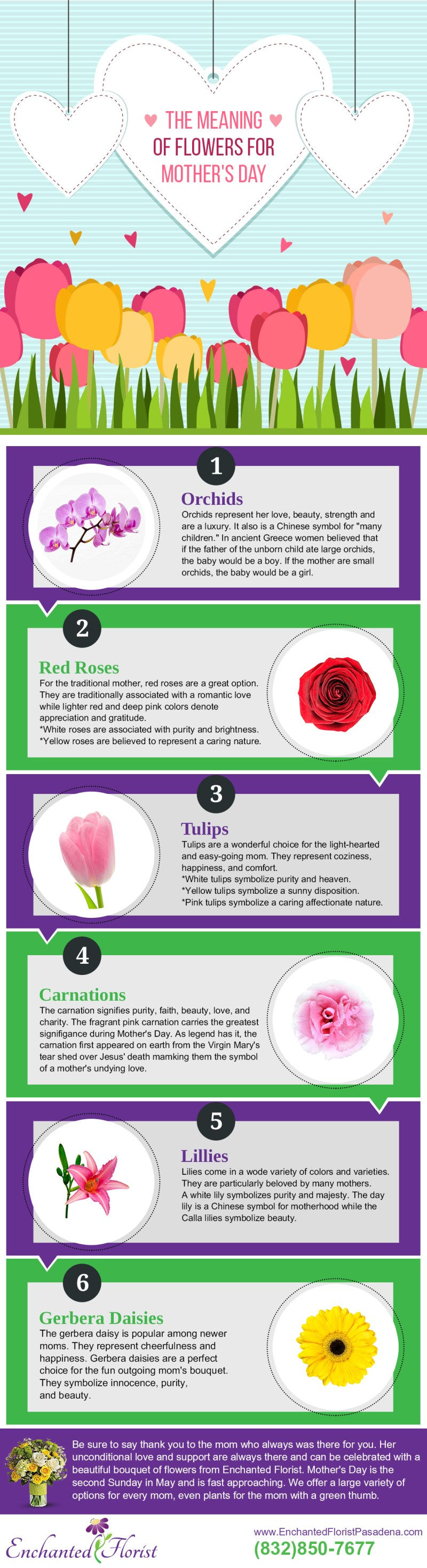 Meaning Of Flower Colors For Mother S Day | Coloringsite.co