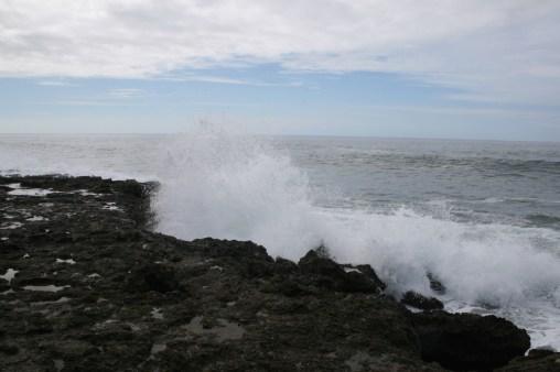 20110116-050